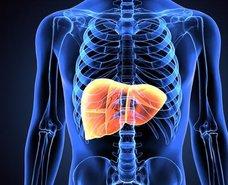 Karaciğeri yenileyen besinler nelerdir?