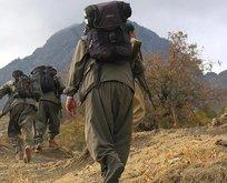 PKK ve Haşdi Şabi'ye Sincar ültimatomu!