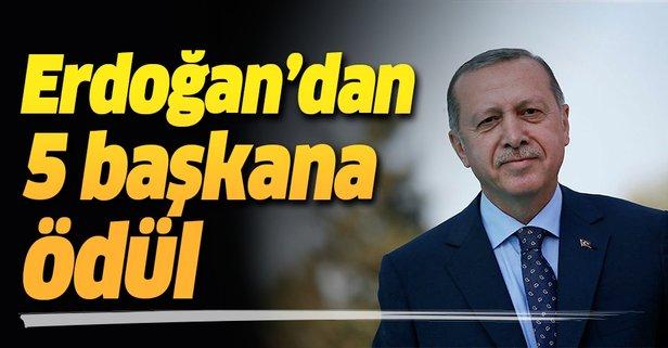 Erdoğan'dan 5 belediye başkanına ödül