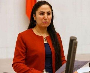 HDP'li vekil TBMM Genel Kurulunda haddini aştı