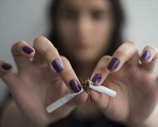 Atın şu sigarayı