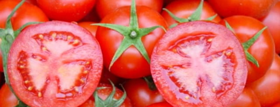 Gelmiş Geçmiş En Sağlıklı Besinler Listesi Galeri Takvim