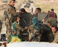 YPG/PKK oraya sığınacak!
