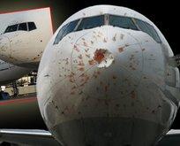 Kuş sürüsüne giren kargo uçağı Atatürk Havalimanı'na acil iniş yaptı