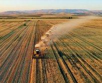 Dijital tarım arazisi