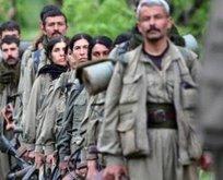 Azerbaycan'dan kritik Türkiye kararı! PKK'lı terörist...