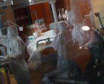 Avrupa'dan şoke eden koronavirüs stratejisi!