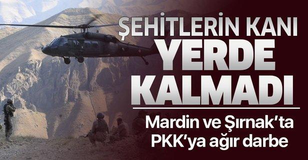 Şırnak ve Mardin'de PKK'ya ağır darbe!