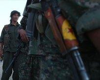 YPG/PKK işgalindeki kampta insanlar cinsel köle yapılıyor