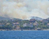 Bakan Pakdemirli: Yangınlar kontrol altında