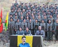 PKK HDP iş birliği o raporla bir kez daha gözler önüne serildi!
