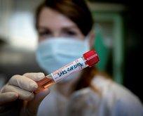 Koronavirüs bulaşan sayısı 4 milyonu aştı!