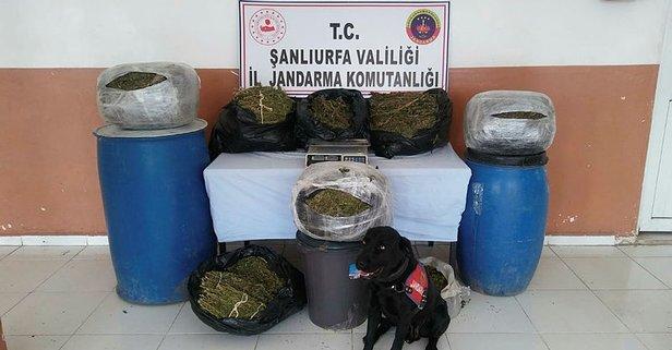 Şanlıurfa'da uyuşturucu çetesine 4 tutuklama