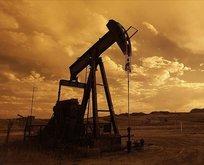 OPEC'ten video konferanslı toplantı!