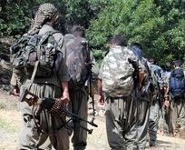 Irak Kürt Bölgesel Yönetimi'nden PKK'ya sert tepki