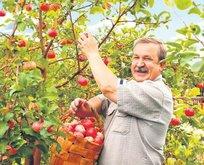 Çiftçi borçları da yapılandırılıyor