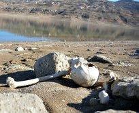 Baraj suyu çekilince mezarlar ortaya çıktı!