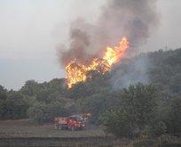 Orman yangınında sabotaj ihtimali