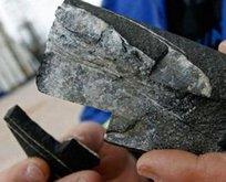 Trakya'da kaya gazı heyecanı