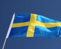 İsveçte ırkçı partiden ırkçı vaat
