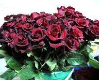 Dünya annelerinin çiçeği bizden