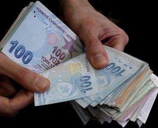 Son dakika: Tarım ve Orman Bakanlığı'ndan çiftçiye müjde: Destek ödemeleri hesaplara yatmaya başladı