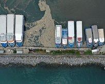 Bakanlık Marmara Denizi için harekete geçti!