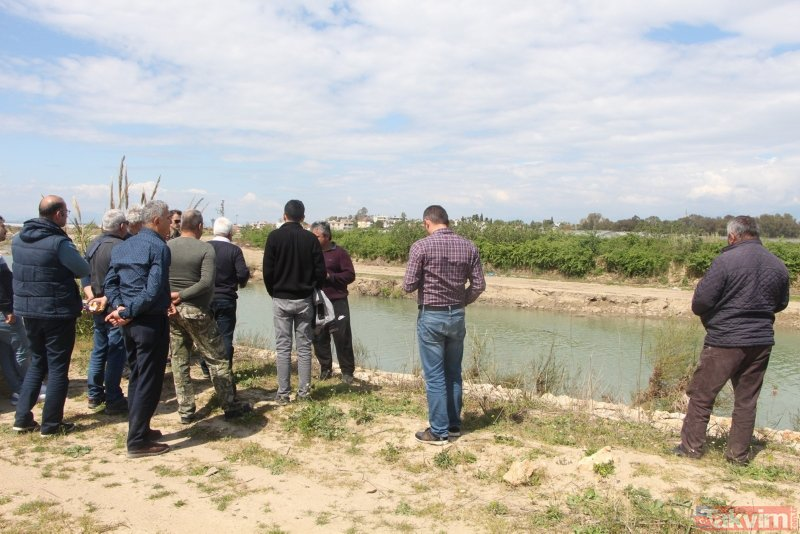 Antalya'da nesli tükenmekte olan Akdeniz foku bulundu
