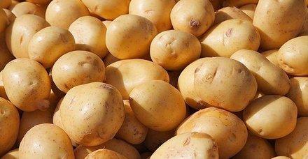 Patates-soğan 1 TL'ye inecek