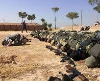 Barış Pınarı Bölgesi'nde terör saldırısı önlendi
