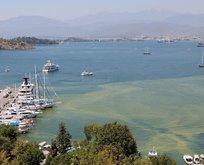 CHP'li belediyenin duyarsızlığı Fethiye Körfezi'ni kirletti!
