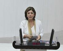 PKK'yı vurmayın, Öcalan'ı serbest bırakın