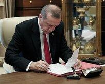 Türkiye ihtiyaç sahibi ülkelere 110 bin ton yardım