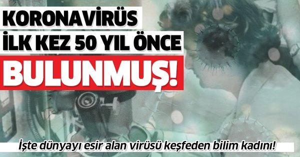 Son dakika: Koronavirüs ilk olarak 1964'te bulunmuş! İşte ...