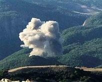 Tunceli'de ormanı ateşe veren PKK'lı öldürüldü