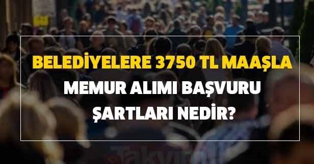 Belediyelere 3750 TL maaşla memur alımı başvuru şartları nedir?