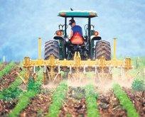 Hazine arazileri yarı bedelle çiftçilere