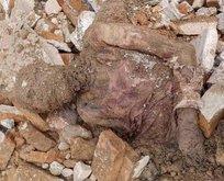 İranda bulunan mumya kime ait olduğu ortaya çıktı