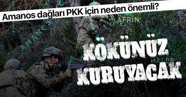 Amanos Dağları PKK için neden önemli?