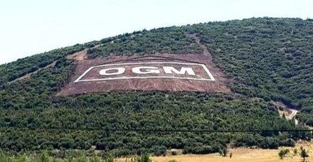 Tarım ve Orman Bakanlığı personel alımı başvuruları ne zaman? OGM başvuru şartları nelerdir?