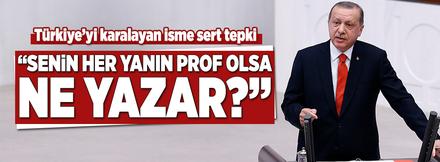 Erdoğan'dan Türkiye'yi karalayan profesöre çok sert tepki!