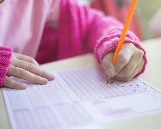 AÖF sınav sonuçları ne zaman açıklanıyor?
