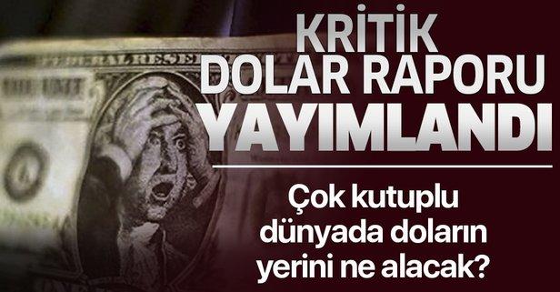 SETA'dan dolar raporu