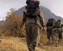 Yunanistan'a kaçmaya çalışan PKK'lı terörist yakalandı!