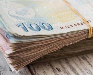 Vatandaşa binlerce lira karşılıksız destek verilecek! İşte alma şartları