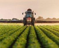 Tarıma dayalı yatırım desteği 4 ay uzatıldı
