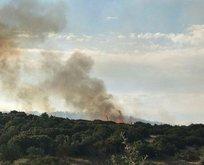 Çanakkalede orman yangını!