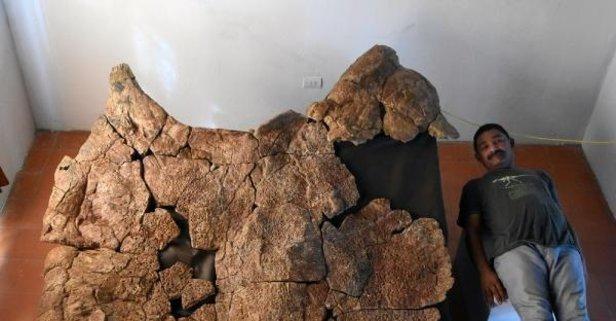O dünyanın en büyüğü! Tam 10 milyon yıllık