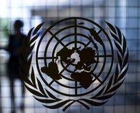 BM'den kritik Kıbrıs kararı