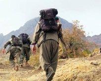 PKK' ya ağır darbe!